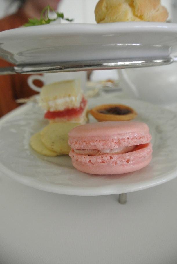 Beautiful strawberry macaroon, butter tart, rhubarb opera cake and lavender sugar cookie.