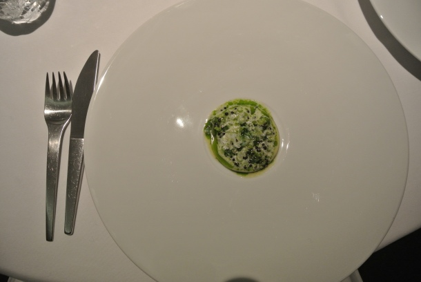 11th course - salted hake, buttermilk, kaviar and herb stems.