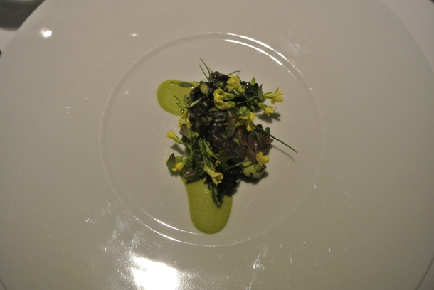 14th course - Oysters from Limfjorden, fermented cabbage, seaweed and thyme.