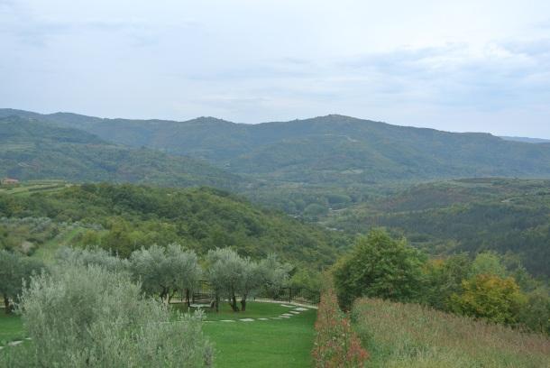 Karlic - view