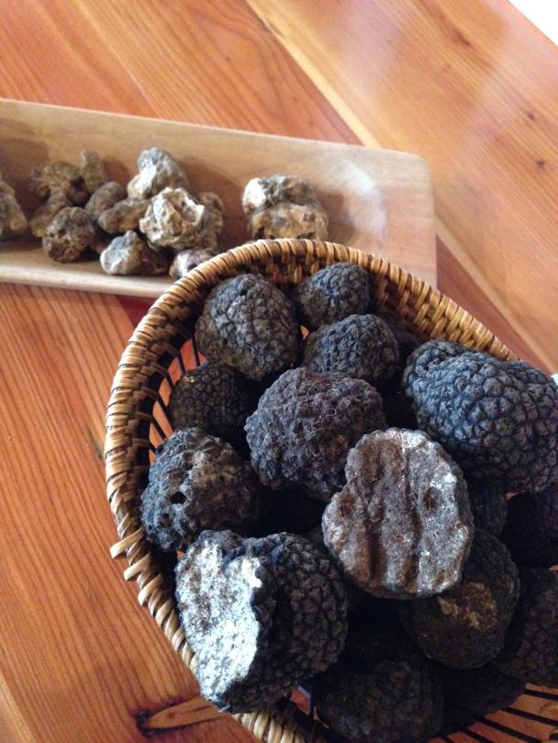 Karlic - truffles
