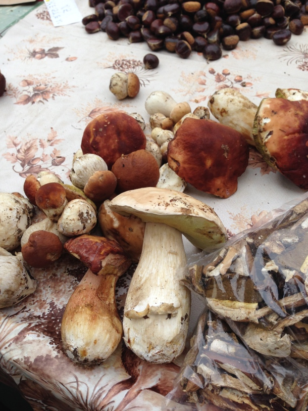 Dolac - mushrooms